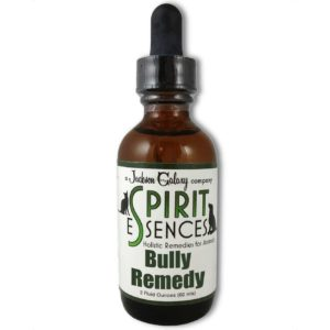 Bully Remedy