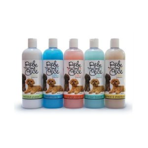 Shampoos by Bebe and Cece