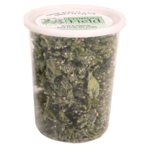 FROM THE FIELD ORGANIC ALL NATURAL CATNIP BUDS IN A TUB AMERICA GROWN DRIED