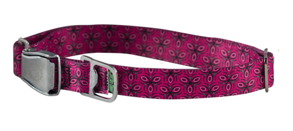 Cycle Dog Bottle Opener Dog Collar, Ecoweave Fuchsia Tri-Style Collar