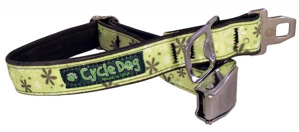 cycle dog, collar